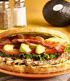 Grilled Chicken & Avocado BLT