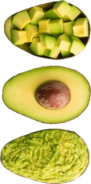 Growing Avocados | Facts About Climate, Trees, Seeds & More